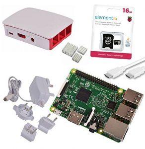 kit_raspberry-292x300